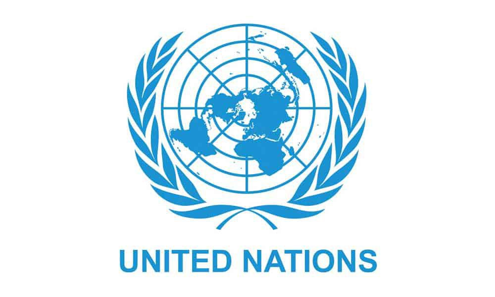 Open Call for NGOs to apply for Consultative Status with the United Nations